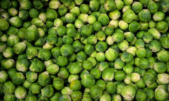 Broussel sprouts calibrated