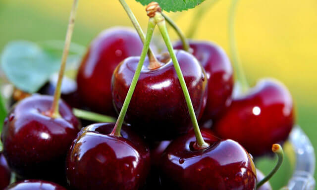 Sour cherries without stones